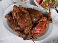 Blue Crabs and Spaghetti
